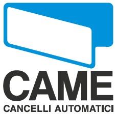 Логотип CAME